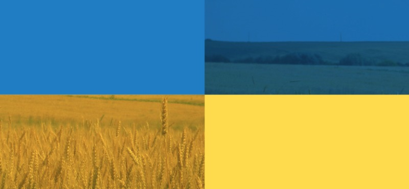 Attracting Investors Ukraine