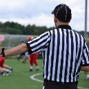 Call in the Referee: Court Appointed Experts in Complex Cases