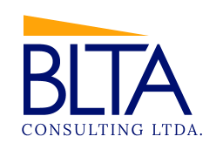 Image for BLTA Consulting Ltda