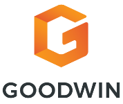 Image for Goodwin