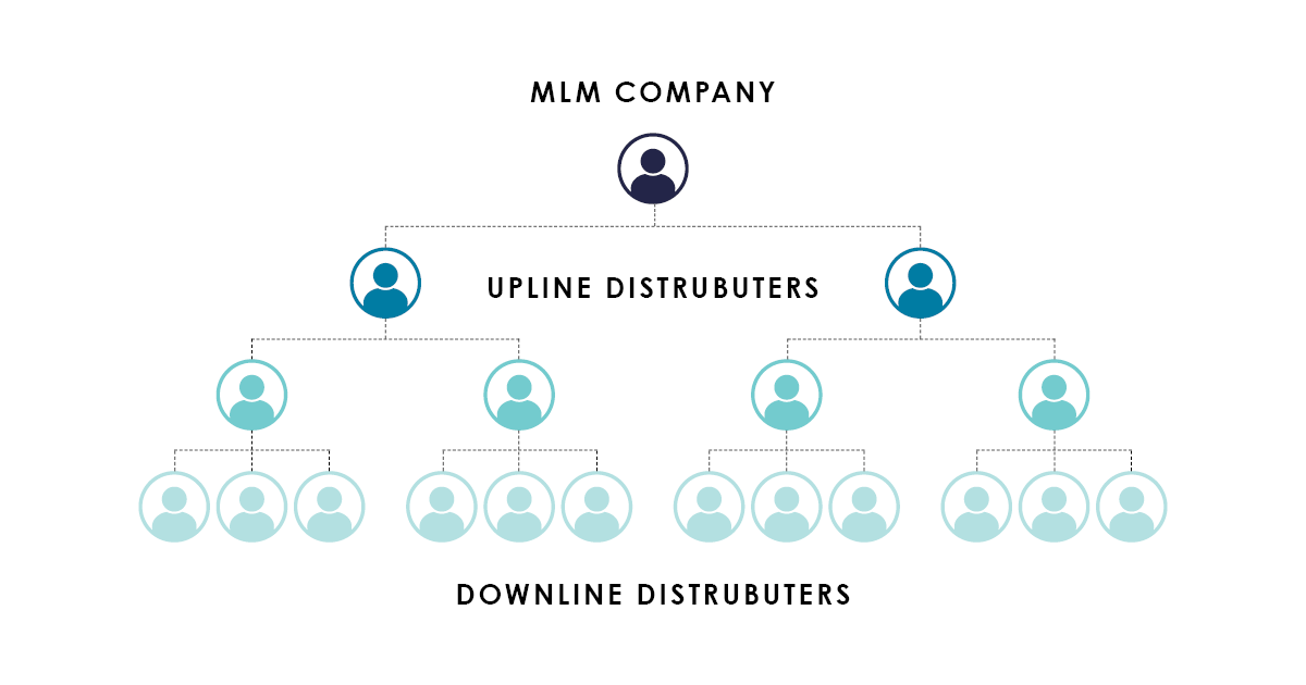 Employment Law MLM Chart